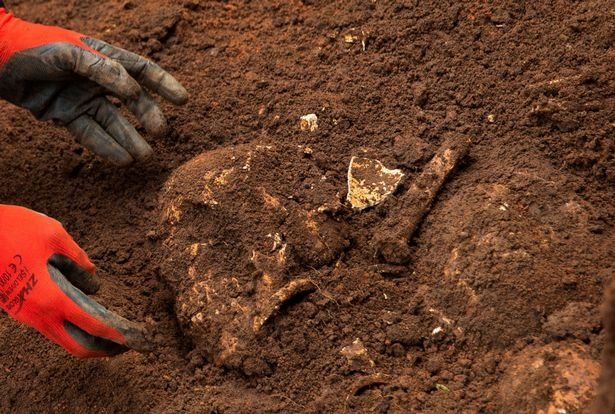 A nationwide excavation was launched in January (Image: REUTERS)